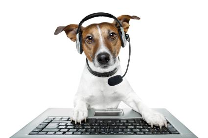 Contacto residencia canina